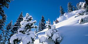 Skipisten in Aspen / © Aspen/Snowmass