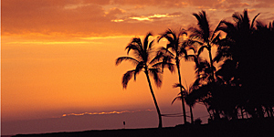 Dämmerung auf Hawaii