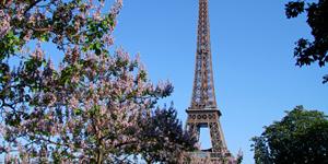 Reisetipp Paris - der Eiffelturm