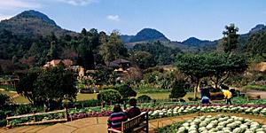 Reisenews: Ein Besuch bei den königlichen Entwicklungsprojekten in Thailand