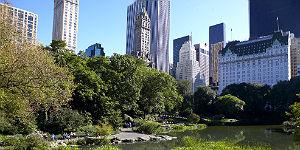 New Yorker Luxushotels locken mit Preis-Special