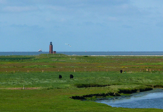 Leuchtturm Nordmarsch