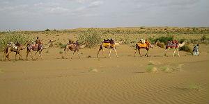 Kamel-Karawane mit den beiden Wüstenführern