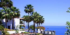 Im Hotel Jardín Tecina auf La Gomera werden Gäste zu Hobby-Botanikern