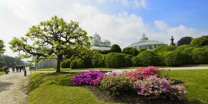 Besichtigung der Königlichen Gewächshäuser in Brüssel