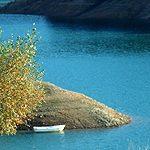 Naturparadies Kroatien – zwischen Edelweiß und Edel-Reizker
