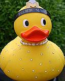 Ente sichern für das 9. Kieler Entenrennen