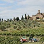 Toskana – Weinreise im Land der Zypressen
