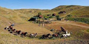 Cowboy Abenteuer © Tourism Saskatchewan