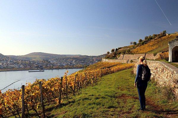 Wandern entlang des Rheins © Thomas Sbikowski